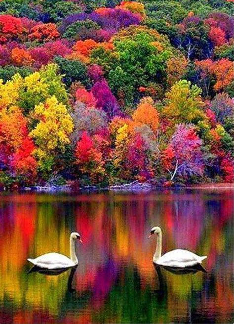 best places to see fall colors in usa new hshire usa pinteres