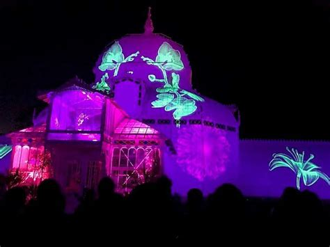 summer of love light show summer of love concert and light show come to golden gate
