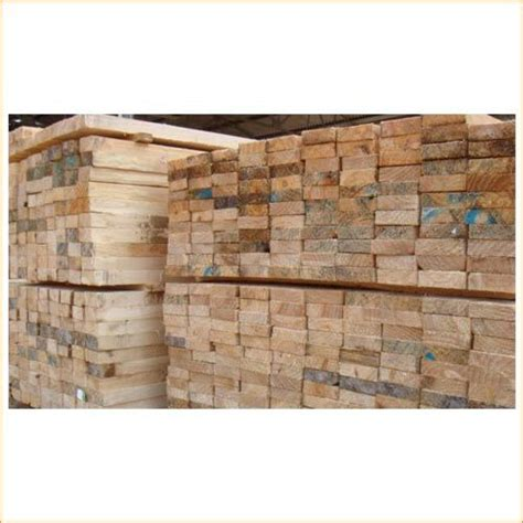 silver oak wood timber in coimbatore tamil nadu india kailas timber plywoods