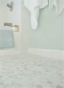 sherwin williams sea salt is a beautiul paint colour with