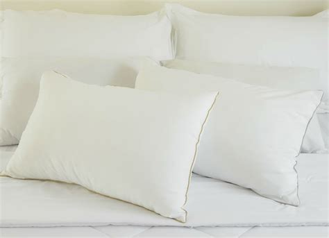 clean pillows in the freezer 10 things to put