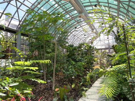 giardino botanico montecarlo orto botanico di catania storia e piante
