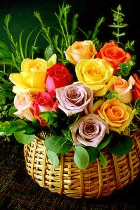 imagenes de flores whatsapp imagenes de flores para felicitar por whatsapp
