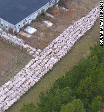 Social Security Office Minden La by Report 6 Million Pounds Of Gunpowder Improperly Stored In