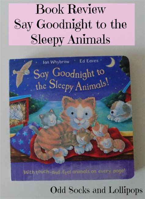 goodnight one books say to the sleepy animals review socks