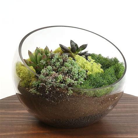 large pod terrarium vase
