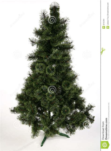 christmas tree no decoration stock image image 3715761