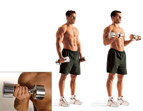 frugal fitness 174 free home biceps triceps forearms