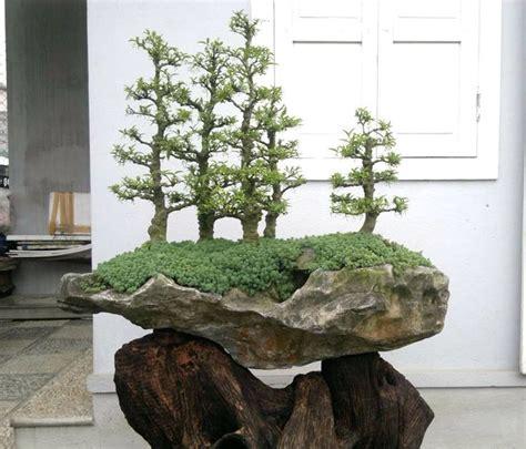 Bonsai Rock Garden 102 Best Images About Rock Planting Or Landscape Bonsai On Pinterest