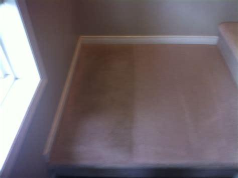 upholstery cleaning edmonton amsteam carpet upholstery cleaning in edmonton homestars
