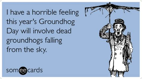 feels like groundhog day meaning groundhog day quotes quotesgram