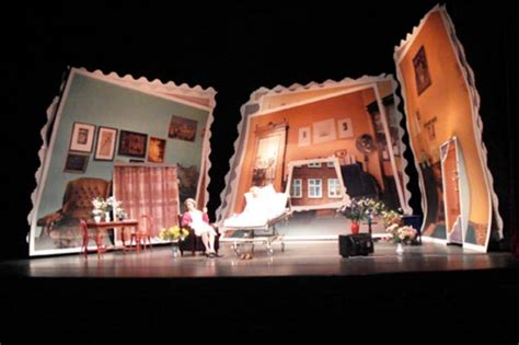 Home Theater Decor Pictures The Sunshine Boys