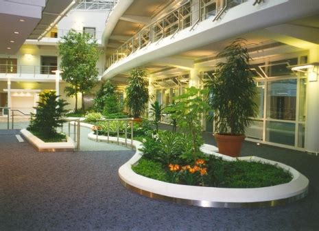 indoor landscaping interior landscaping frosts landscape construction uk