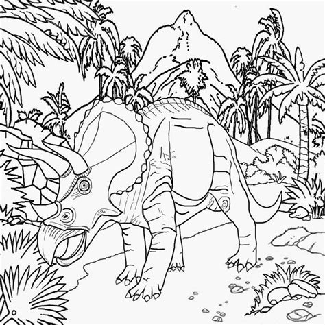 north american animals coloring page animals of north america coloring pages coloring pages