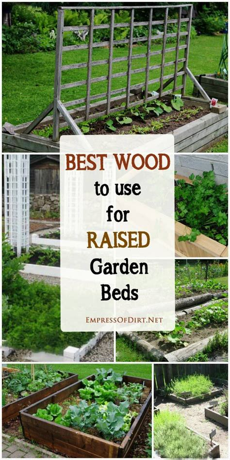 best wood for raised beds tips for choosing the best wood for raised garden beds gardens woods and garden ideas
