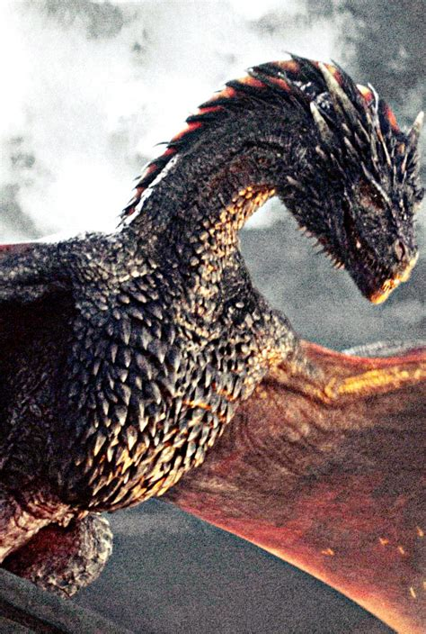 drogon game of thrones wiki fandom powered by wikia