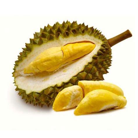 types  durians thailand durianscom
