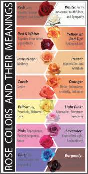 color meanings of roses what do the different colors of roses answerthis co