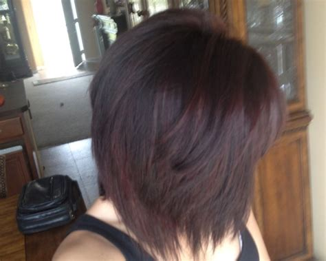 level 5 brown hair 1000 ideas about violet highlights on
