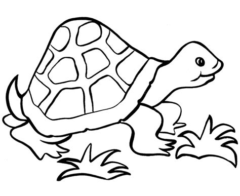 simple turtle coloring page easy coloring pages best coloring pages for kids