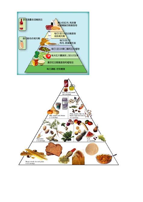 Food Pyramid Worksheet by Food Pyramid Worksheet