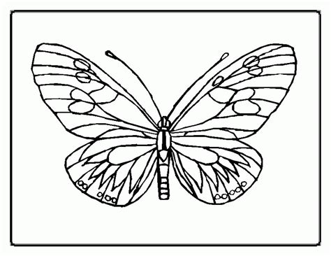 butterfly and ladybug coloring pages printable coloring