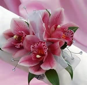 pink corsage mini cymbidium orchid corsage pink
