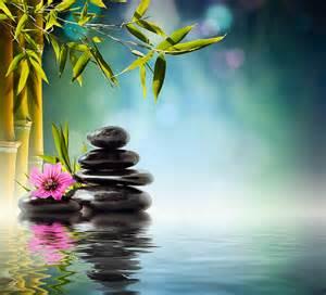 imagenes de rosas sobre agua meditation entspannung download tiertalk com
