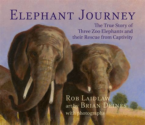 elephant picture books children s books rob laidlaw