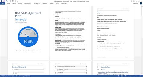 Risk Management Plan Template Program Management Plan Template