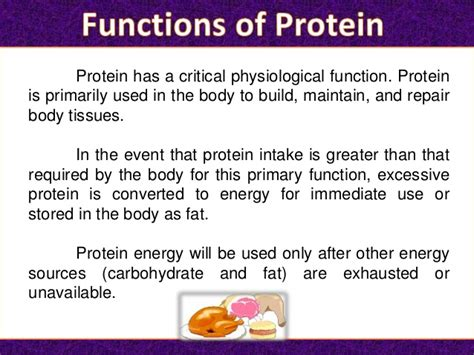 5 proteins and their functions protein its functions