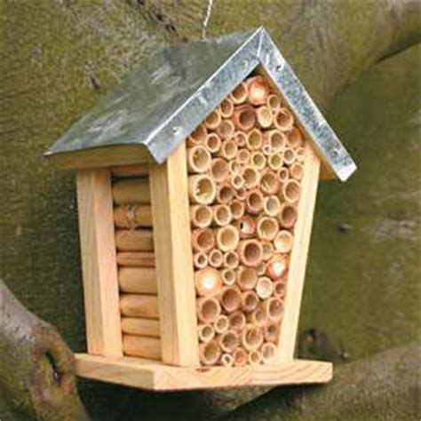 Bee House by So Our Bee House Is Buzzing Now What Urban75 Forums