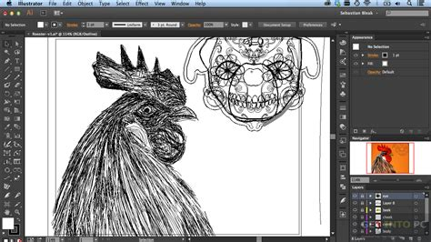 adobe illustrator cc free download full version with crack mac adobe illustrator cc full 2015 mg gratisprogramas