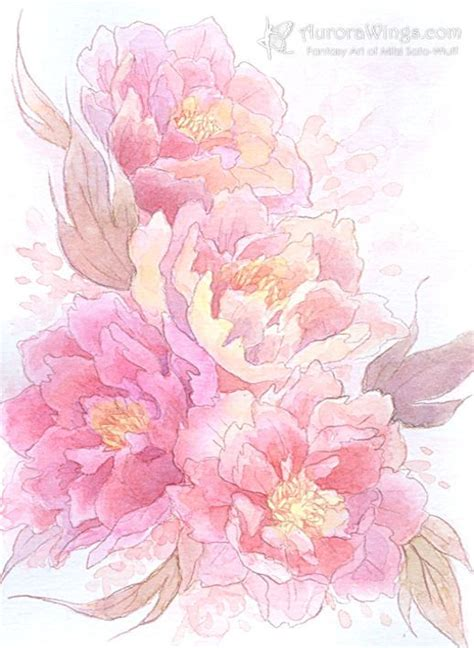 watercolor peony tattoo 17 best images about ideas and cover ups on