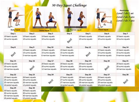 30 day exercise challenge for 30 day exercise challenge eunicakes
