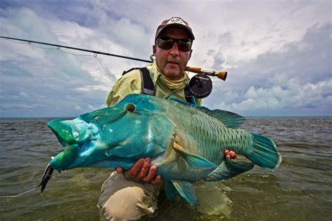 yellow fly fishing farquhar seychelles yellow fly fishing