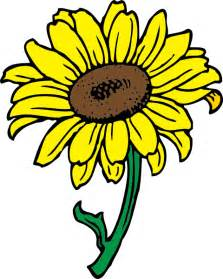 Sunflower Clip Outline by Sunflower Clipart Best