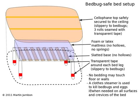 can bed bugs climb metal 25 answers what are the best ways to get rid of bed