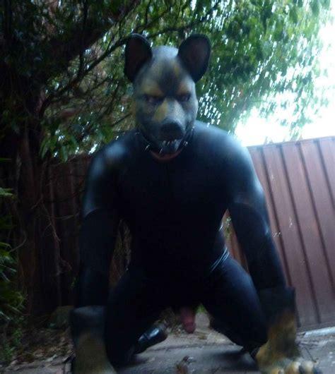 human puppy play alpha suit siriuspup
