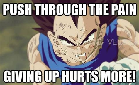 Vegeta Memes - are you training insaiyan gym memes do you even