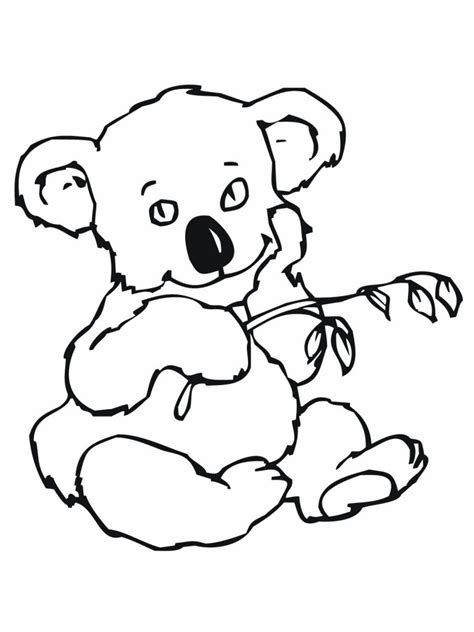 printable coloring pages koala free printable koala coloring pages for kids