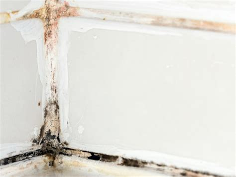 how to remove black mold from bathtub how to remove black mold hgtv