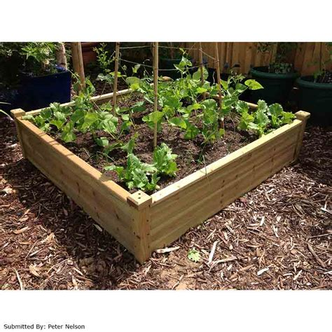 raised garden beds for sale terra fir raised bed 12m x 12m on sale fast delivery