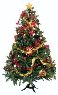 Images Of Christmas Trees Christmas Tree Christmas Tree History Christmas Tree