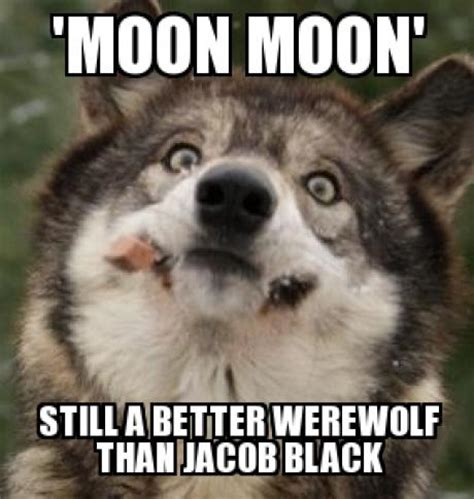 Moon Moon Memes - image 534235 moon moon know your meme