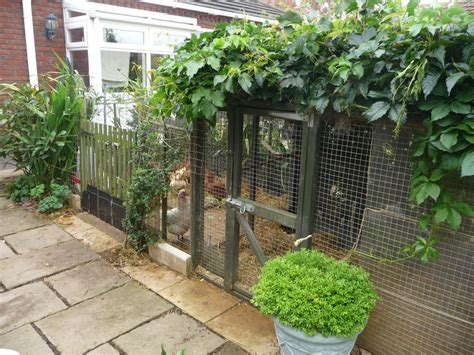 chicken house for sale chicken run house for sale boston lincolnshire pets4homes