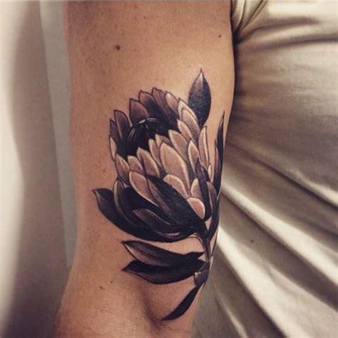 tattoo protea flower 35 best protea images on pinterest protea art botanical
