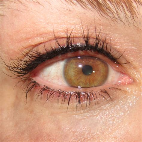 tattoo eyeliner for small eyes permanent eyeliner natural line top only sheila bella