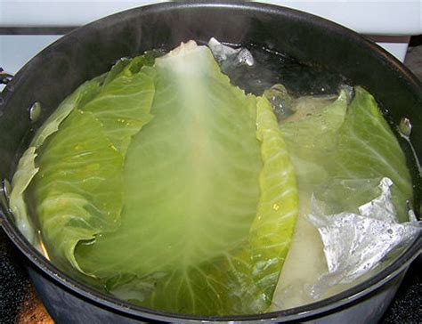 how to remove the smell of boiled cabbage cabbage recipes