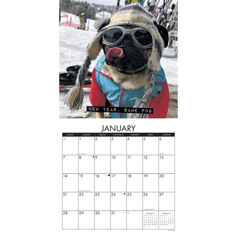 pug calendar doug the pug wall calendar 2018 willow creek press